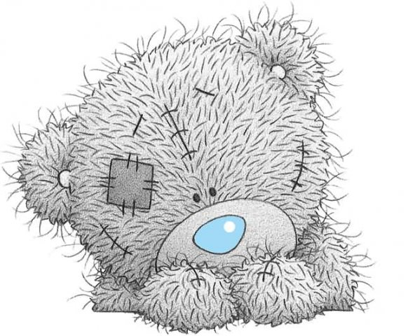 Face-Of-Tatty-Teddy-Picture.jpg